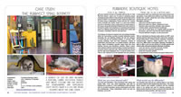 Cattery Boarding Cattery Design case study USA